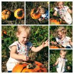 HBE had a terrific time in the pumpkin patch decoratinghellip
