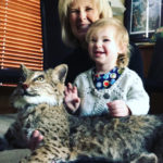 Cause doesnt everyone need a taxidermy Bobcat?? Grooming her earlyhellip