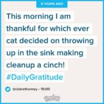 Dear Cat Remember 8 years ago how you yarfed inhellip